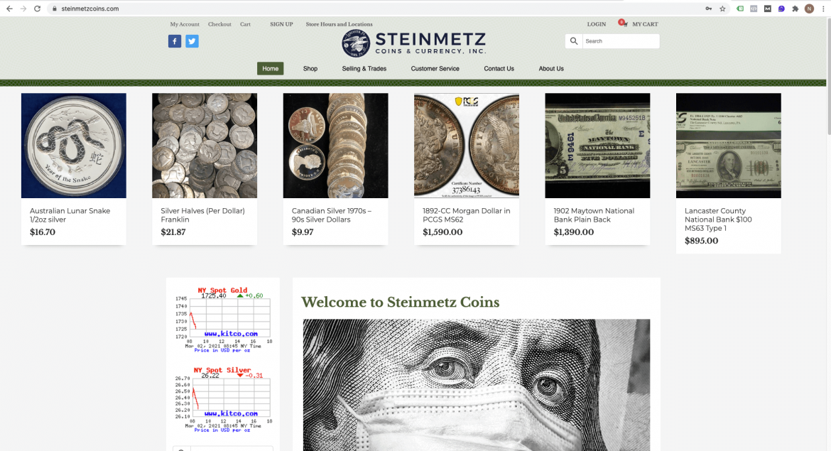 steinmetzcoins.com logo and site design